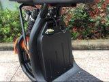 Removeableのリチウム電池が付いているCoc 1500WのセリウムそしてRoHS Aprovedの電気スクーター