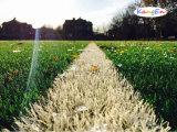 Het Kunstmatige Gras van Thiolon van de goede Kwaliteit voor het Gebied van de Voetbal (mstt-40)