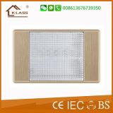 interruptor elétrico da parede da maneira do grupo 2 de 10A 250V 2