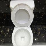 Bon prix Types de toilette en céramique à deux pièces