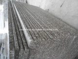 Mattonelle del granito G664/lastre del granito/punti/controsoffitto del granito