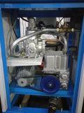 erogatore del combustibile di 380V 0.75kw 750W Censtar