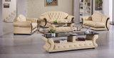 Divan en cuir de sofa de Dvany 3 Seater des meubles de salle de séjour