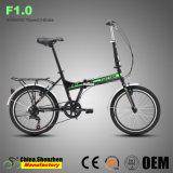 Velocidade de 7 barato 20polegadas Adulto Roda bicicleta dobrável de liga de alumínio