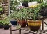 流し塗りの装飾の植木鉢(KD9432K-KD9433K)