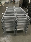 Échelle d'échafaudage en acier galvanisé avec pince à joint intérieur