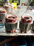 Het Hijstoestel van het Bouwmateriaal van 7.5 Ton Met Zij Magnetische Rem