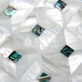 Color blanco de la naturaleza de agua dulce del shell y azulejo de mosaico del shell del olmo