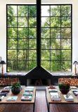 حديقة مترف منزل زجاجيّة مشمسة