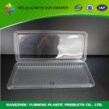 使い捨て可能な食品包装の容器の卸売