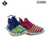 Zapatos de los deportes y zapatos corrientes de la zapatilla de deporte