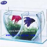 Tank van de Vissen van het Aquarium van de Lijst van de staaf de Tegen (btr-S2043)