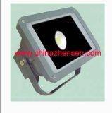 FloodLamp/LEDの照明/フラッドランプ(FloodLamp ZSP-30-1-145)