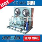 Pianta della stanza del congelatore della fabbrica elaborante del gambero con il compressore di Bitzer