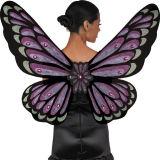 De Vleugels van de vlinder