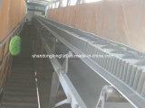 Corrugate la paroi latérale en caoutchouc de la courroie du convoyeur