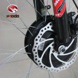 """20"""" de matières grasses Tricycle électrique de pneus pour le Beach Cruiser"""