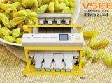 Utilisation de trieuse de couleur de trieuse de couleur des graines de CCD pour trier le raisin sec d'arachides de soja