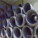 Tangshan Construciton를 위한 온화한 코일 SAE 1006b/1008b/1010b 6.0mm 철 철사
