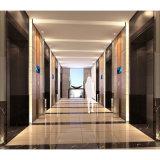SGSの品質のホテルの家具のための確実な合板のウォールボード