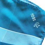 Femmes en soie d'écharpe de grand dos de sensation d'écran de polyester de mode d'impression de vente en gros Chiffon d'écharpe (SC019)