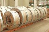 Bobina d'acciaio Bicromato di potassio-Placcata (TFS0902)