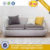 高品質の余暇のプラスチック椅子(HX-8NR2283)