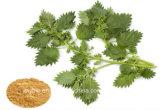 Выдержка Saponina+B 8%-20% листьев сенны, Hemostasis и Cathartic