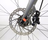 2017 bicicleta de alumínio nova da montanha do frame de Shimano Deore 10speed da forma