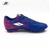 Футбол высокого качества напольный обувает ботинки футбола для людей TPU (Zs-004#)