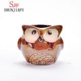 5 Porselein Dierlijke Flowerpot/C van de Planter van de Uil van het Beeldverhaal van het ontwerp het Ceramische