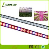 108W impermeabili LED coltivano la barra chiara con lo spettro blu rosso per la crescita idroponica delle piante d'appartamento