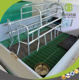 Gemaakt in het Werpen van de Leverancier van China het Ontwerp van het Krat voor Varkensfokkerij