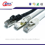 근거리 통신망 유선 텔레비전 방송망 케이블 편평한 Cat7 0.3m 금 연결관