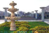 De het Natuurlijke Graniet van de tuin/Fontein van de Steen (001)