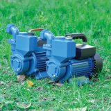 Périphérique de haute qualité de la pompe à eau domestiques (BID)