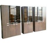 De Boekenkast van de Plank van het Bureau van het Kabinet van het dossier met de Deur van het Glas