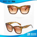 Óculos de sol plásticos por atacado baratos 9768 da forma UV400 no estoque