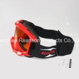 Lunettes antibrouillard de motocyclette coupées par UVB d'UVA Fmx