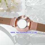 Montre personnalisant les montres-bracelet d'alliage de quartz (WY-17024)