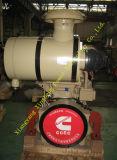 Motor diesel Ccec Cummins del sector de la construcción original de Nta855-C335