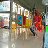 Matériel extérieur de cour de jeu d'enfants de HDPE étonnant (PE-22004)