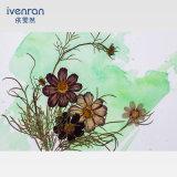 Pintura de pared presionada preservada de la flor para el regalo de la decoración
