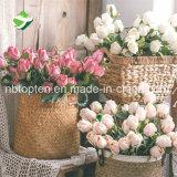 Rosa de lujo en venta al por mayor de la decoración de flores artificiales suministros