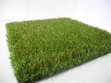 Erba artificiale per l'erba di gioco del calcio, erba di calcio (Y30-R)