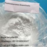 Pharmazeutischer Grad-Steroid Puder-Prüfung Enan Testosteron Enanthate 315-37-7