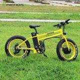 Double bicyclette électrique du moteur 350W Bafang grosse