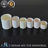 Ry различные технические характеристики короткого замыкания глинозема керамические Crucibles от 1800c