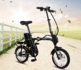 Ebikes 48V 12ah 지능적인 지적인 관제사 또는 전기 통근자 자전거