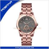 Psd-2345 새로운 디자인 a+ 질 스위스 형식 내진성 석영 시계